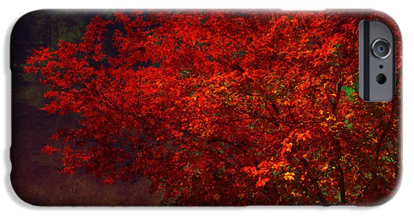 Autumn Scenes iPhone Cases - Red autumn tree iPhone Case by Susanne Van Hulst