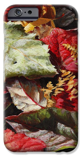 Autumn iPhone Cases - Red Autumn - Wasilla Leaves iPhone Case by Karen Whitworth