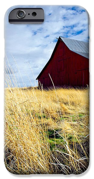 Old Barn iPhone Cases - Red Barn iPhone Case by Storm Smith