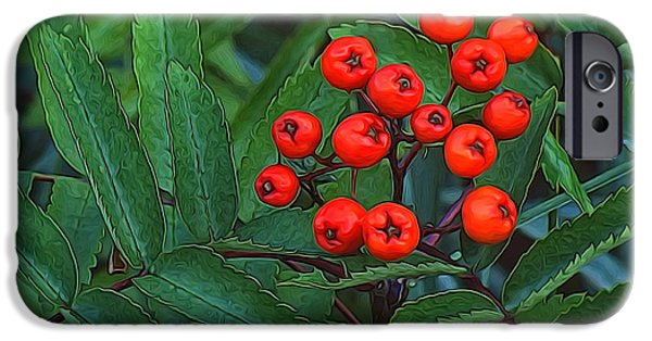 Shape iPhone Cases - Red Berries iPhone Case by Richard Farrington