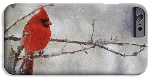 Snowy iPhone Cases - Red Bird of Winter iPhone Case by Jeff Kolker
