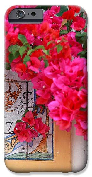 Red bougainvilleas iPhone Case by Gaspar Avila