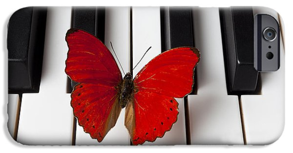 Animals Photographs iPhone Cases - Red Butterfly On Piano Keys iPhone Case by Garry Gay