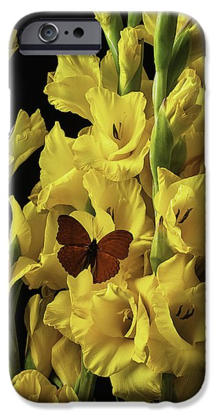 Gladioli iPhone Cases - Red Butterfly On Yellow Glads iPhone Case by Garry Gay