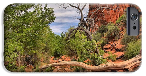 Red Cliffs iPhone Cases - Red Cliffs Red Reef Trail iPhone Case by Adam Jewell