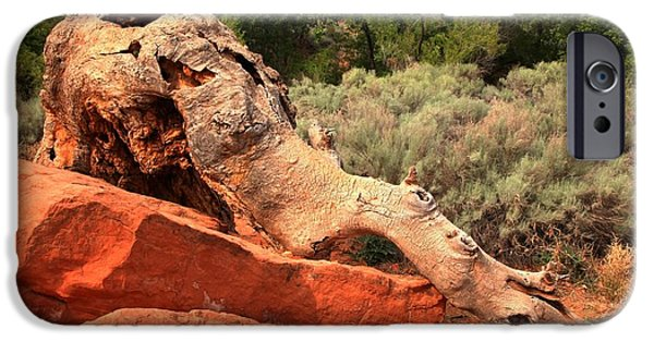 Red Cliffs iPhone Cases - Red Cliffs Wooly Mammoth iPhone Case by Adam Jewell