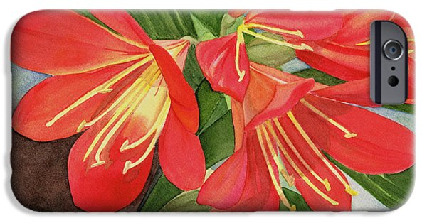 Flora iPhone Cases - Red Clivias iPhone Case by Hao Aiken