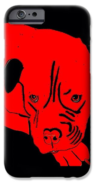 Dogs iPhone Cases - Red Dog iPhone Case by Karen Harding