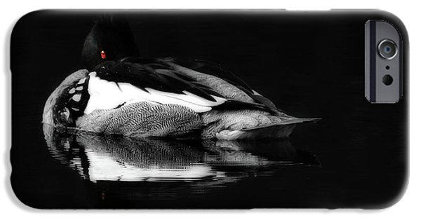 Loon iPhone Cases - Red Eye iPhone Case by Lori Deiter