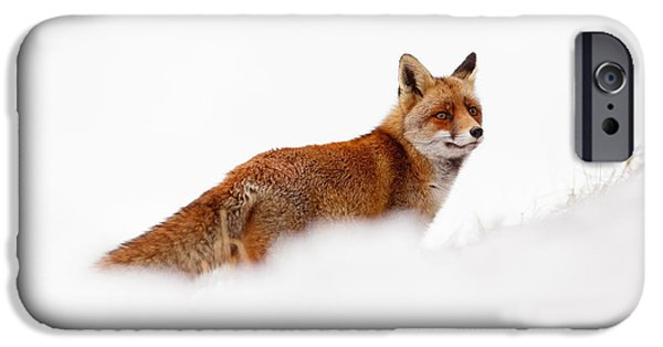 Red Eye iPhone Cases - Red Fox White World iPhone Case by Roeselien Raimond