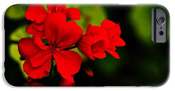 Red Geraniums iPhone Cases - Red Geranium on Water iPhone Case by Kaye Menner