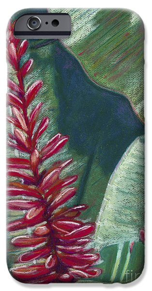 Vibrant Pastels iPhone Cases - Red Ginger iPhone Case by Patti Bruce - Printscapes