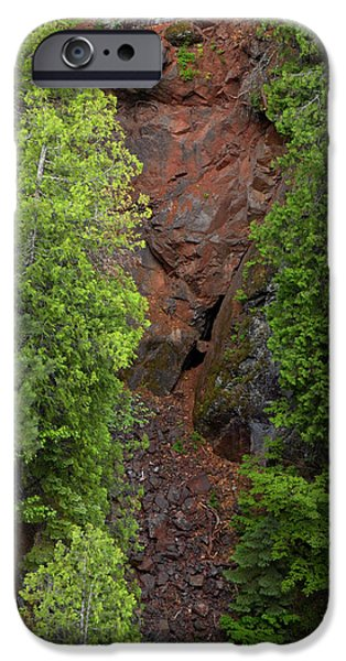 Red Gorge with Cedar Trees iPhone Case by Cynthia Dickinson