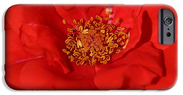 Summer iPhone Cases - Red iPhone Case by Heike Hultsch