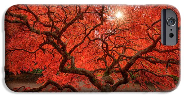 States iPhone Cases - Red Lace iPhone Case by Dan Mihai