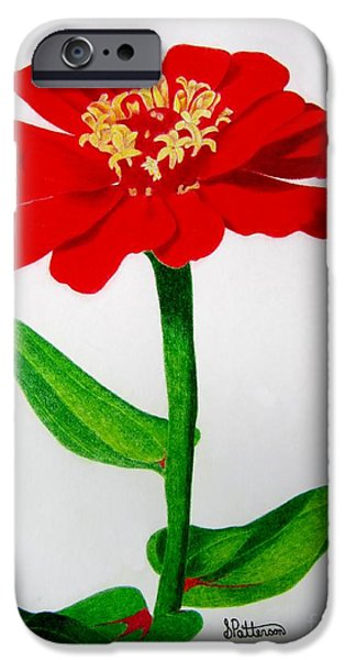 Flora Drawings iPhone Cases - Red Marigold iPhone Case by Sharon Patterson