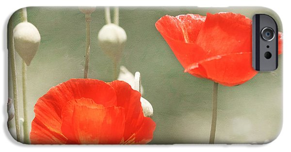 Botanical iPhone Cases - Red Poppies iPhone Case by Kim Hojnacki