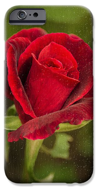 Rollo Digital Art iPhone Cases - Red Rose Behind Wet Glass iPhone Case by Christina Rollo