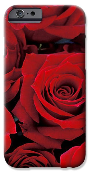 Red Rose Bouquet iPhone Case by Kathy Yates