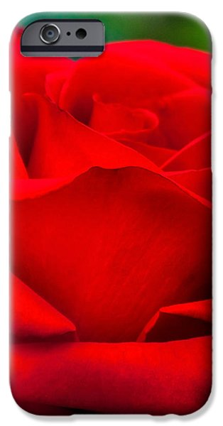 Centre iPhone Cases - Red Rose Petals 2 iPhone Case by Az Jackson