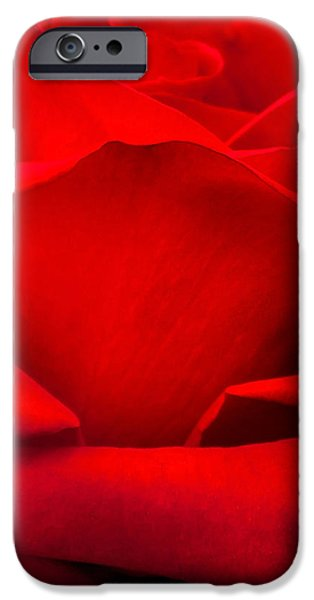 Centre iPhone Cases - Red Rose Petals iPhone Case by Az Jackson
