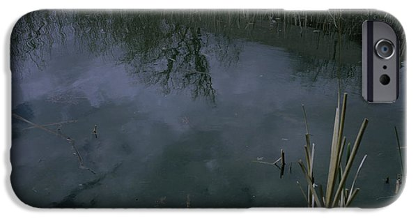Ledge iPhone Cases - Reflecting Reeds iPhone Case by Rachael Armstead