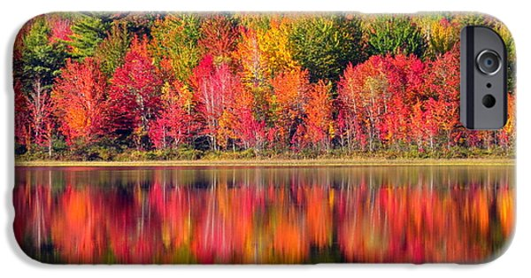 Autumn iPhone Cases - Reflection iPhone Case by Laurie Breton