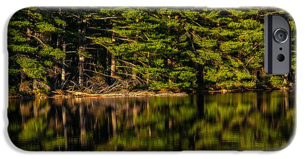 Reflection Of Trees iPhone Cases - Reflection Of The Pines iPhone Case by Karol  Livote