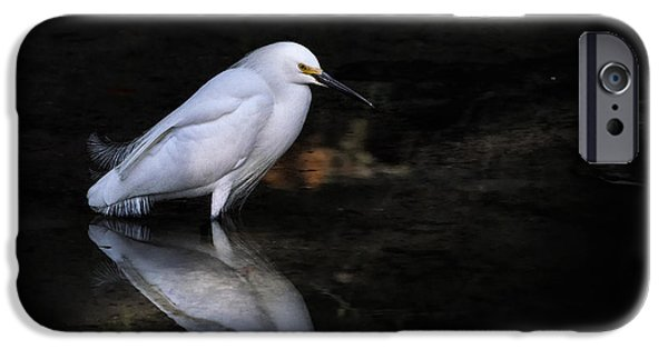 Snowy Day iPhone Cases - Reflections Of......... iPhone Case by Ghostwinds Photography