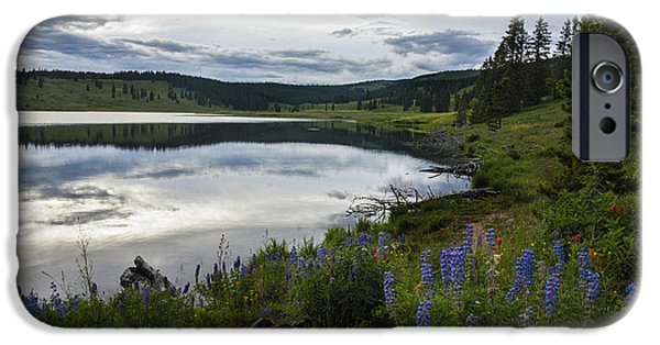 Pines iPhone Cases - Dumont Lake Reflections iPhone Case by Dave Dilli
