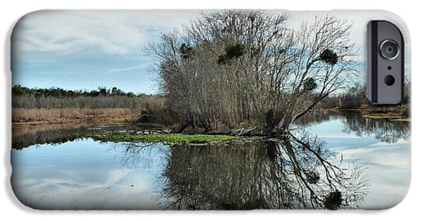St. Johns River iPhone Cases - Reflections On The St. Johns iPhone Case by Deborah Benoit