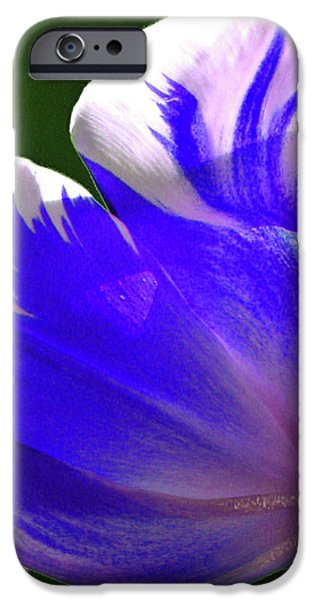 Reigning Tulips iPhone Case by Christine Belt