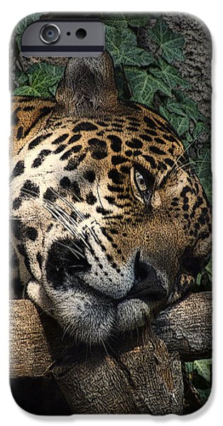 Relaxing iPhone Case by Ernie Echols