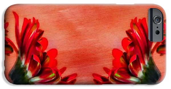 Drama iPhone Cases - Relective Gerbera Daisy iPhone Case by Clare Bevan
