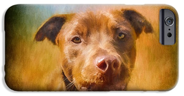 Chocolate Lab iPhone Cases - Rescued Chocolate Lab Portrait iPhone Case by Eleanor Abramson