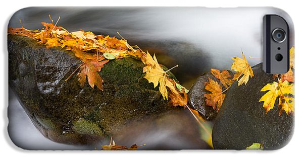 Autumn iPhone Cases - Respite iPhone Case by Mike  Dawson
