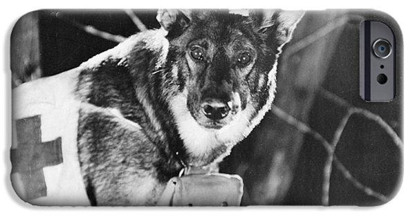 Alsatian iPhone Cases - Rin-tin-tin (1916-1932) iPhone Case by Granger