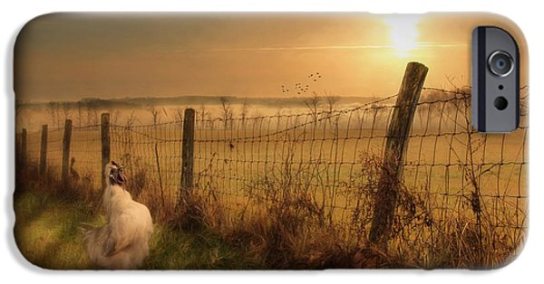 Fog Mist Mixed Media iPhone Cases - Rise and Shine iPhone Case by Lori Deiter