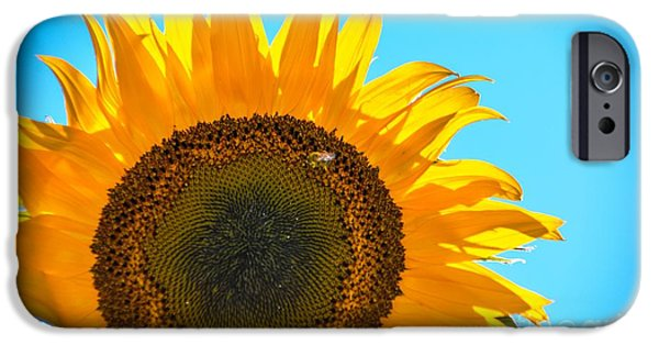One iPhone Cases - Rise N Shine iPhone Case by Lisa Kilby