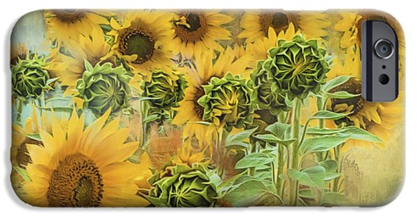Crops iPhone Cases - Rising Sun iPhone Case by Evie Carrier