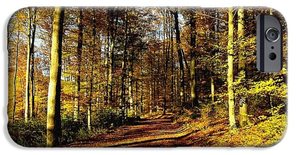 Business Paintings iPhone Cases - Road Through a Forest H b iPhone Case by Gert J Rheeders