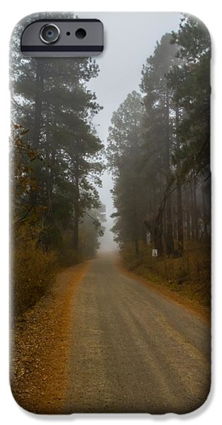 Fall iPhone Cases - Road Through the Fog iPhone Case by Eric  Anderson