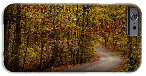 Oak Creek iPhone Cases - Road through Tishomingo State Park iPhone Case by T Lowry Wilson