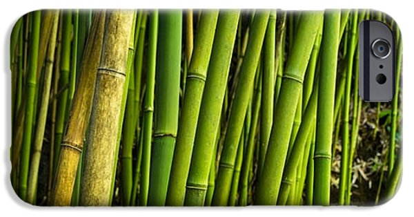 Recently Sold -  - Nature Abstract iPhone Cases - Road To Hana Bamboo Panorama - Maui Hawaii iPhone Case by Brian Harig