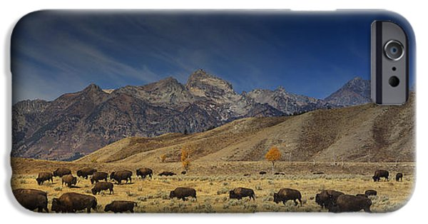 Brush Photographs iPhone Cases - Roaming Bison iPhone Case by Mark Kiver