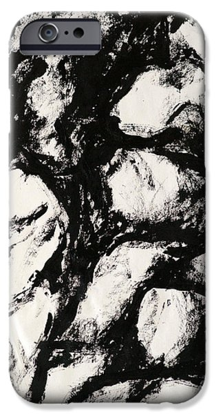 Stratum iPhone Cases - Rocks iPhone Case by Rob Woods
