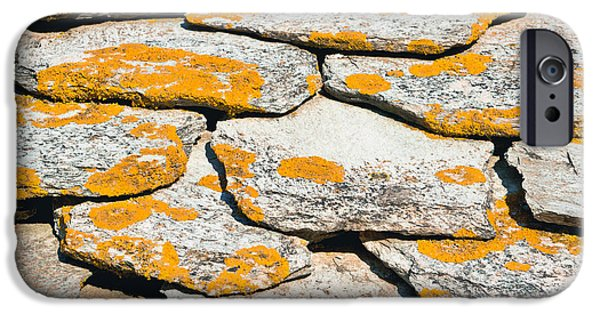 Chip iPhone Cases - Rocks with lichen iPhone Case by Tom Gowanlock
