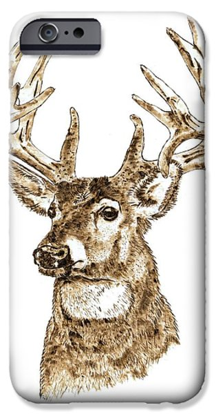 Water Colors Pyrography iPhone Cases - Rocky Mountain Mule Deer iPhone Case by Pat Sloss