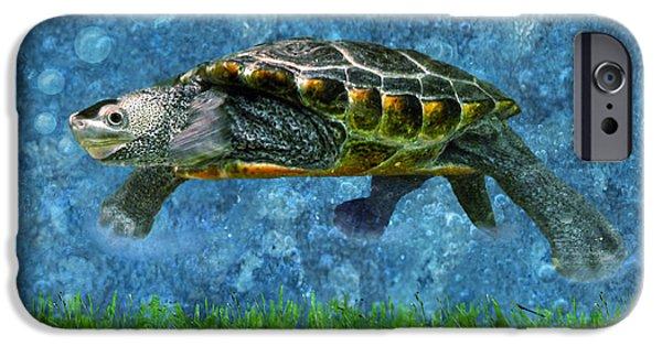 Shape iPhone Cases - Rodney the Diamondback Terrapin Turtle iPhone Case by Sandi OReilly