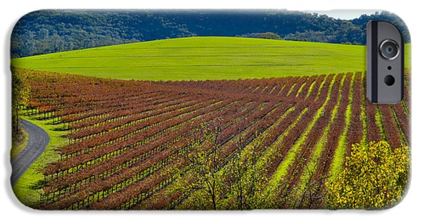 Cmlbrown iPhone Cases - Rolling Hills and Vineyards iPhone Case by CML Brown